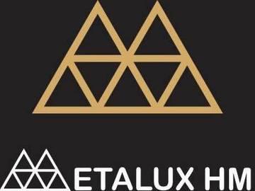 Profesionist: Metalux-H&M