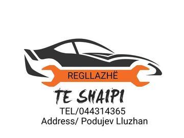 Profesionist: Te Shaipi