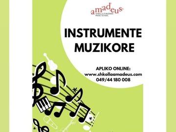Profesionist: Mësime profesionale për instrumente muzikore