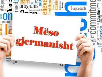 Profesionist: Mesuese e gjuhes gjermane