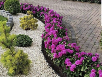Profesionist: Garden Curri