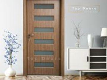 Profesionist: Top Doors