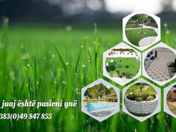 Profesionist: Dino Gartenbau